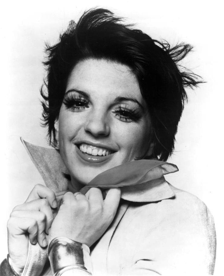 Looking Back at the Brief Moment When Liza Minelli Had the ...