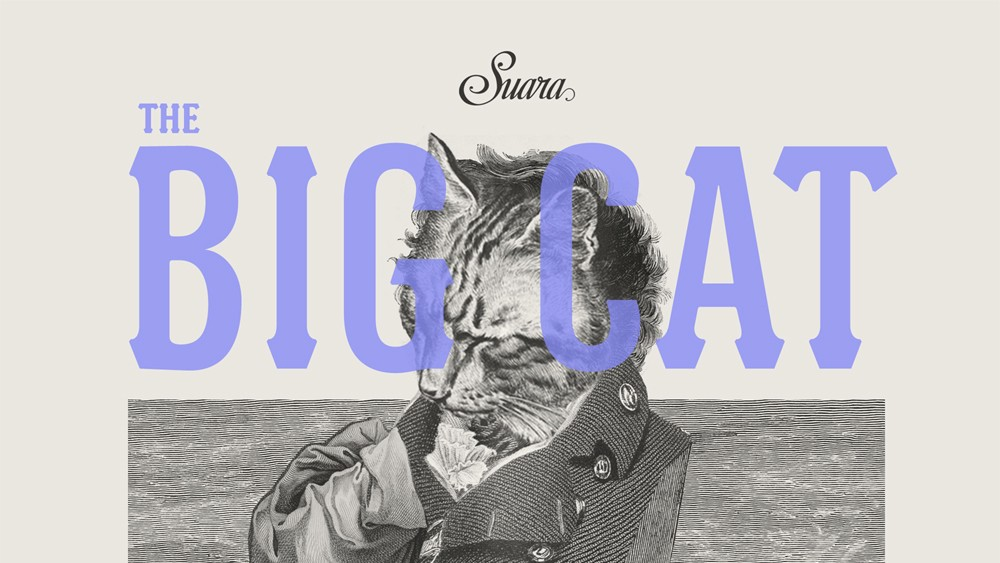 ​Suara, That Friskiest of Spanish Felines, Releases Another Stellar Remix EP