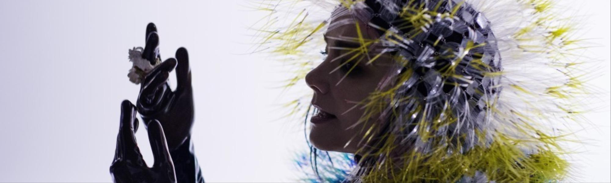 Björk Calls Out Criticism of her Day for Night Festival DJ Set as Sexist
